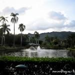 Alexis-Hawaii-2011-161