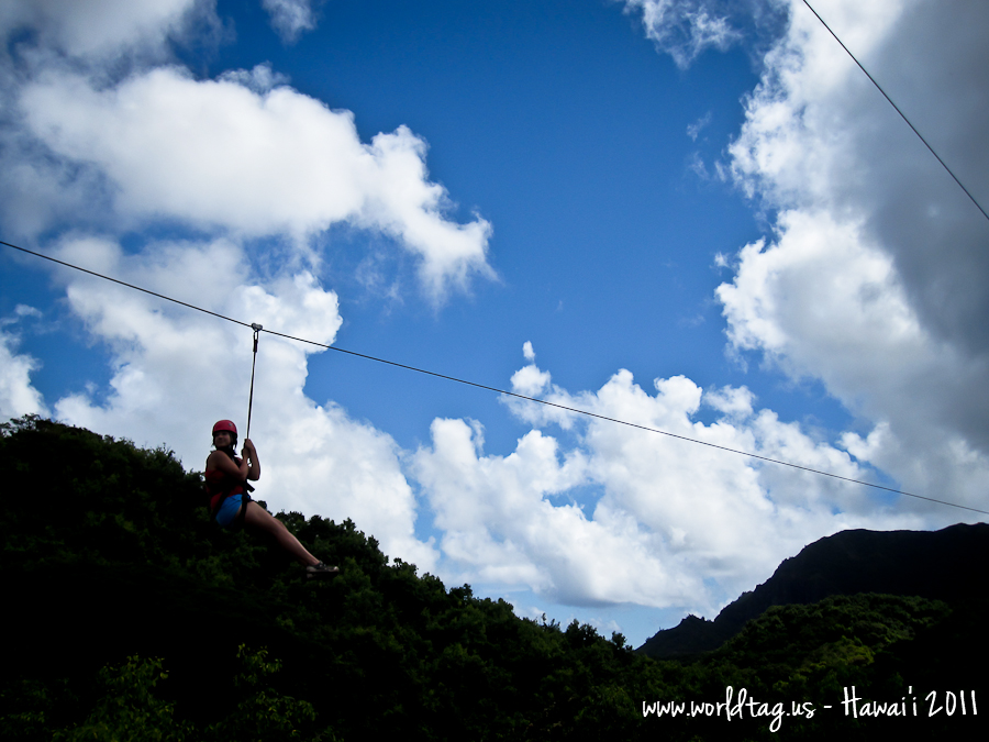 Zipline Down the Garden Isle