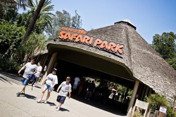 san-diego-safari-park-2013-4044-1