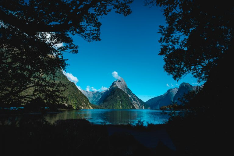 Feast Your Eyes on Milford Sound