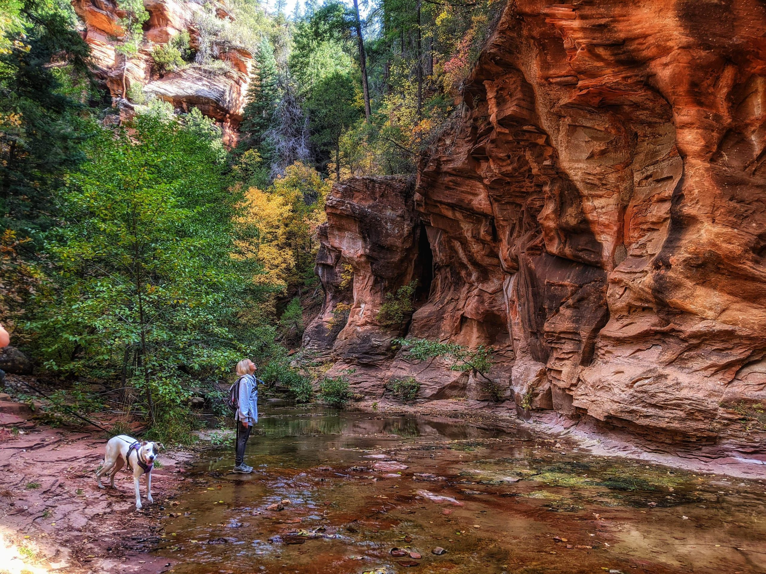 Different Hikes Throughout Arizona
